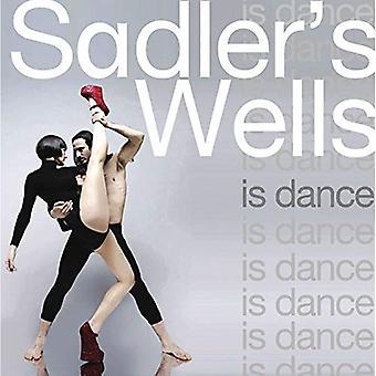 Wells du Sadler's - maison de la danse