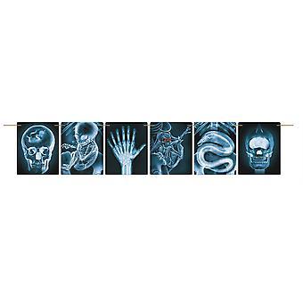 Bristol uutuus hullu tutkija X-ray Halloween Banner