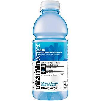 Vitamin vatten Iscool blåbär -( 591 Ml X 1 flaskor )