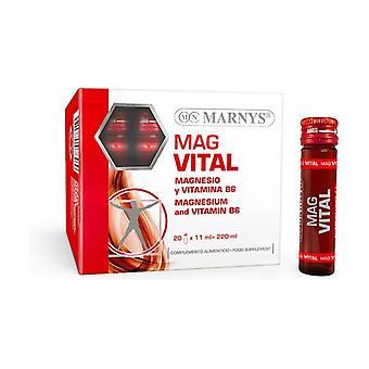 Magvital 20 vials