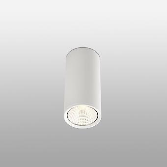 Faro Rel - LED 1 Licht Runde Oberfläche montiert Downlight Weiß