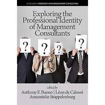 Johdon konsulttien ammatti-identiteetin tutkiminen Anthin avulla