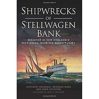 Schiffswracks der Stellwagen Bank:: Katastrophe in New England National Marine Sanctuary