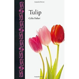 Tulip (botanische)