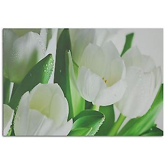 Deco Panel, White Tulips