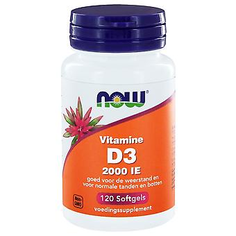 Vitamine D3 2000 IE (120 softgels) - NOW Foods