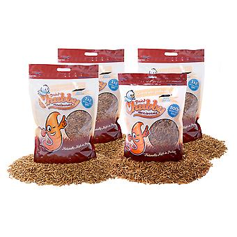 3.5kg chubby dried mealworms