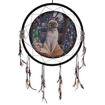 Decorative Lisa Parker Hocus Pocus 60cm Dreamcatcher X 1 Pack