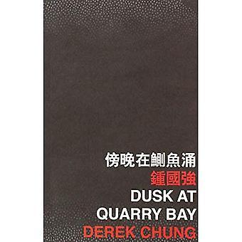 Dusk at Quarry Bay