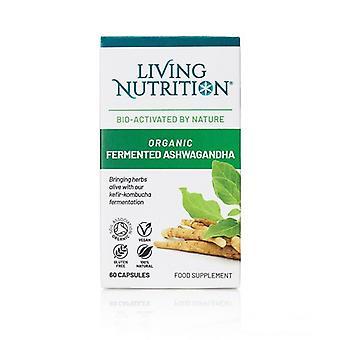 Living Nutrition Organic Fermented Ashwagandha Caps 60 (LN2018)