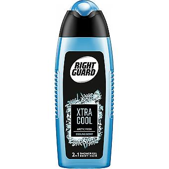 Right Guard 6 X Right Guard 3 In 1 Shower Gel For Men - Xtra Cool