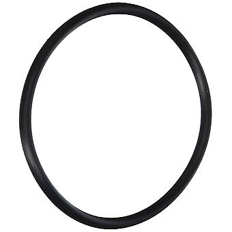 Pentair PacFab 154004 #2-342 Flange Adapter O-Ring
