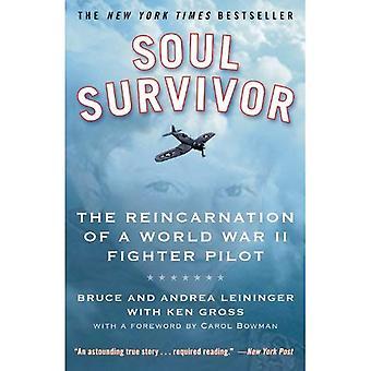 Soul Survivor: Die Reinkarnation eines Kampfpiloten des zweiten Weltkriegs