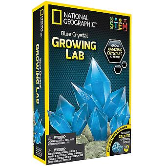 Nacional geográfica cristal azul, crescendo de laboratório