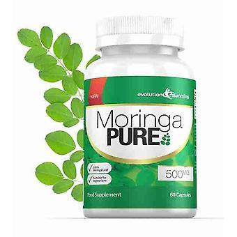 Moringa Pure Capsules 500mg - 60 Capsules - Antioxidant - Evolution Slimming