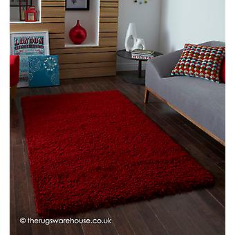 Vista Roter Teppich