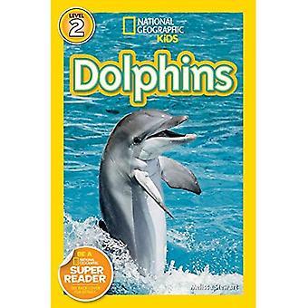 Delfine (National Geographic Leser Serie)