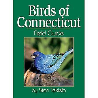 Vogels van Connecticut (veld gidsen)