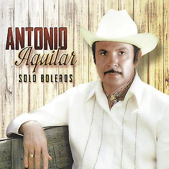 Solo Boleros [CD] USA import