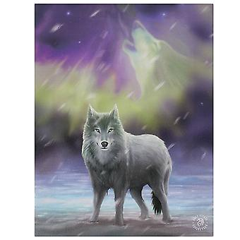 Anne Stokes Wolf Aurora Canvas