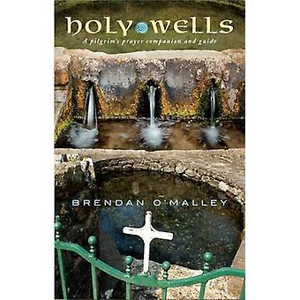 Holy Wells - En pilgrim's bönekamrat och guide av Brendan O'Malle