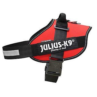 יוליוס-K9 IDC-Powerharness לכלבים גודל: 4, אדום