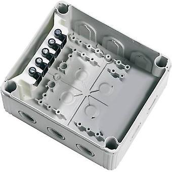 Wiska 10101462 Kopplingsdosa (L x B x H) 160 x 140 x 81 mm Gråvit (RAL 7035) IP66/IP67 1 st(ar)