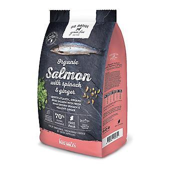 Molinos rojos ir comida para perros seca libre 4kg grano nativo de salmón/espinacas/jengibre
