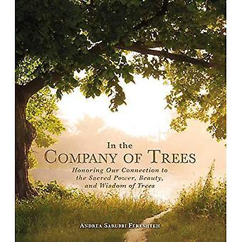 Puiden seurassa: kunnioittaa meidän yhteys Pyhä valtiomme, kauneuden ja viisauden puut