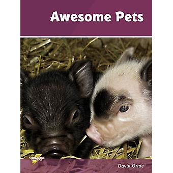 Awesome Pets - Set 3 by David Orme - 9781781270752 Book