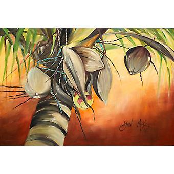 Carolines schatten JMK1128PLMT kokosnoot boom stof placemat