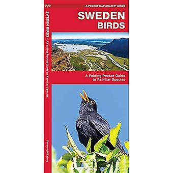 Sweden Birds: A Folding Pocket Guide to Familiar Species (Wildlife and Nature Identification)