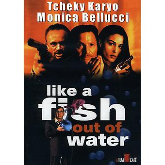 Like a Fish Out of Water (1999) [DVD] USA import