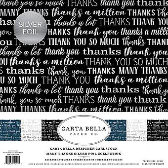 Carta Bella veel dank Zilverfolie 12x12 Inch Collectie