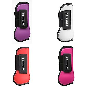 Whitaker Skipton Tendon & Fetlock Boots Set Of 4