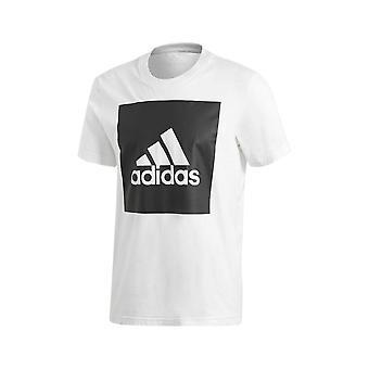 Adidas Ουσιαστικό μεγάλο πλαίσιο λογότυπων B47358 καθολικό όλο το χρόνο άνδρες t-shirt