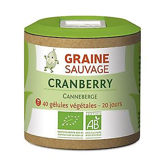 Organic cranberry 40 capsules of 375mg