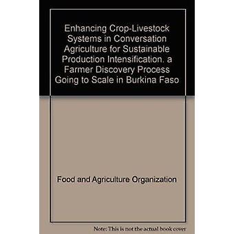 Verbetering van gewas-vee systemen in de instandhouding landbouw voor SoSt