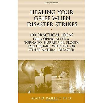 Healing Your Grief When Disaster Strikes: 100 Practical Ideas for Coping After a Tornado, Hurricane, Flood, Earthquake...