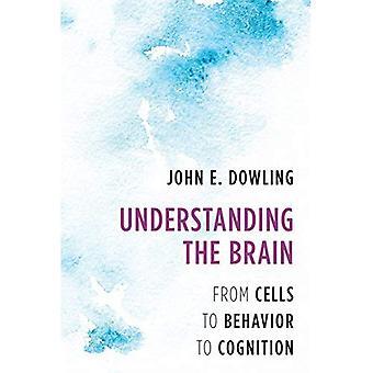 Forstå hjernen: fra celler virkemåten til kognisjon