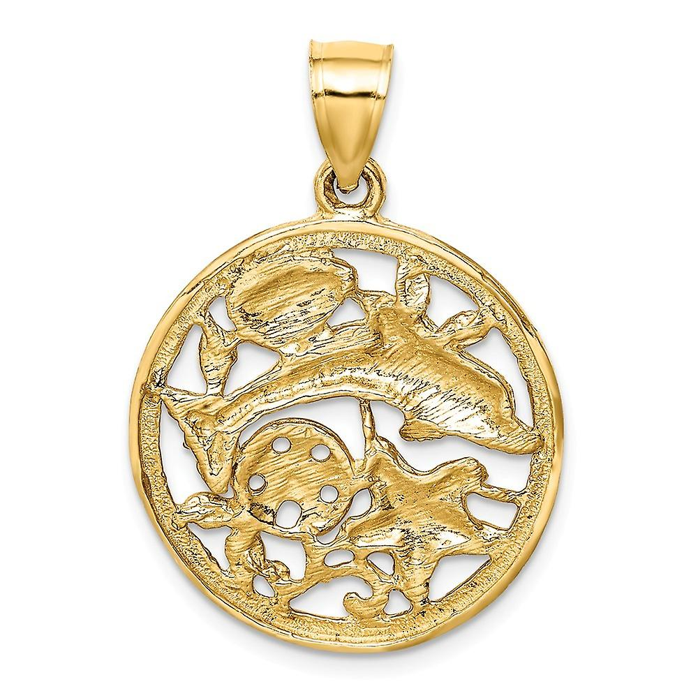 14k Framed Dolphin and Shells Pendant Necklace Jewelry Gifts for Women - 3.4 Grams