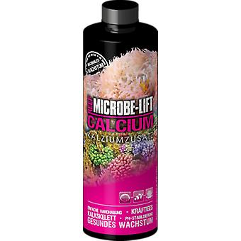 Microbe-Lift Aditivo de Calcio Calcium (Fish , Maintenance , Water Maintenance)