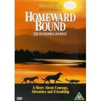 Homeward sidottu uskomaton matka DVD