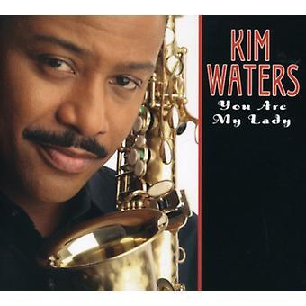 Kim Waters - Sie sind My Lady [CD] USA import