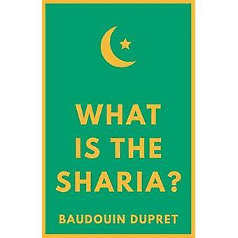 Vad är Sharia? av Baudouin Dupret - 9781849048170 bok