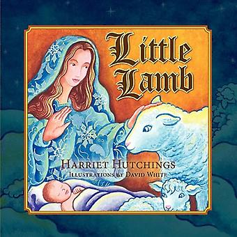 Little Lamb by Harriet Hutchings - Dr David White - 9781936343539 Book