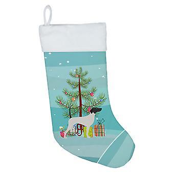 Englanti osoitin hyvää joulu kuusi joulu sukat