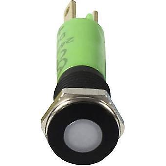 Signal Construct SFEU087225 LED indicator light Green 12 V AC, 12 V DC 087225 SFEU