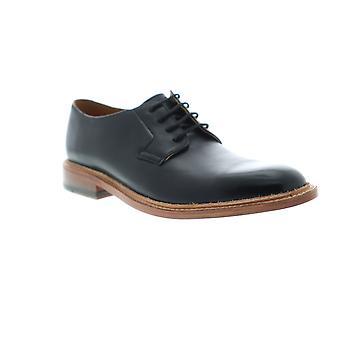 Bostonian Adult Mens No.16 Soft Low Plain Toe Oxfords & Lace Ups