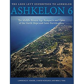 Ashkelon 6 by Edited by Lawrence E Stager & Edited by J David Schloen & Edited by Ross J Voss